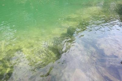 Bela Chácara no Rio Formoso