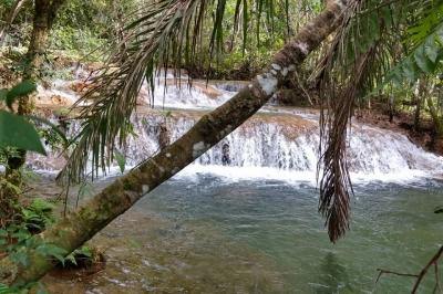 Área Com Nascentes e Cachoeiras