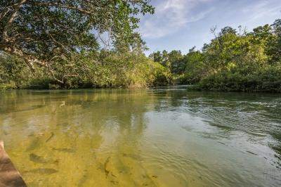 Área Ímpar com Cachoeira no Rio Formoso